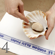 how to open scallops