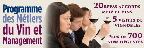 Programme des Métiers du Vin et Management