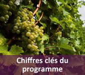 Chiffres clés du programme des Métiers du Vin et Management de l'école Le Cordon Bleu Paris