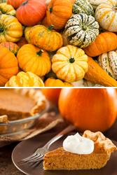 Pumpkin (Squash, pumpkin, gourd)