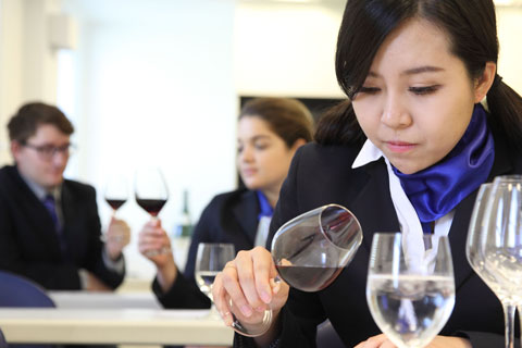 diploma in wine, gastronomy and management - Le Cordon Bleu London
