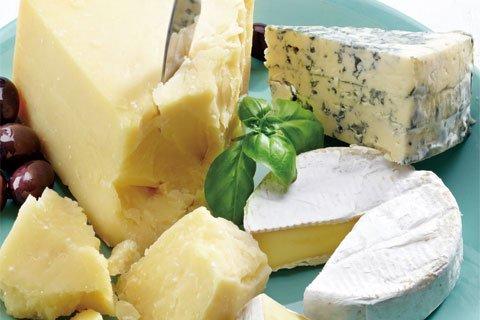 プロも納得の内容 チーズ上級Part2