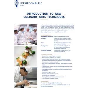 Introduction to New Culinary Arts Techniques
