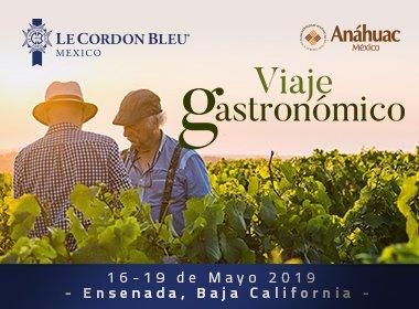 Viaje Gastronómico Ensenada - Le Cordon Bleu Anáhuac