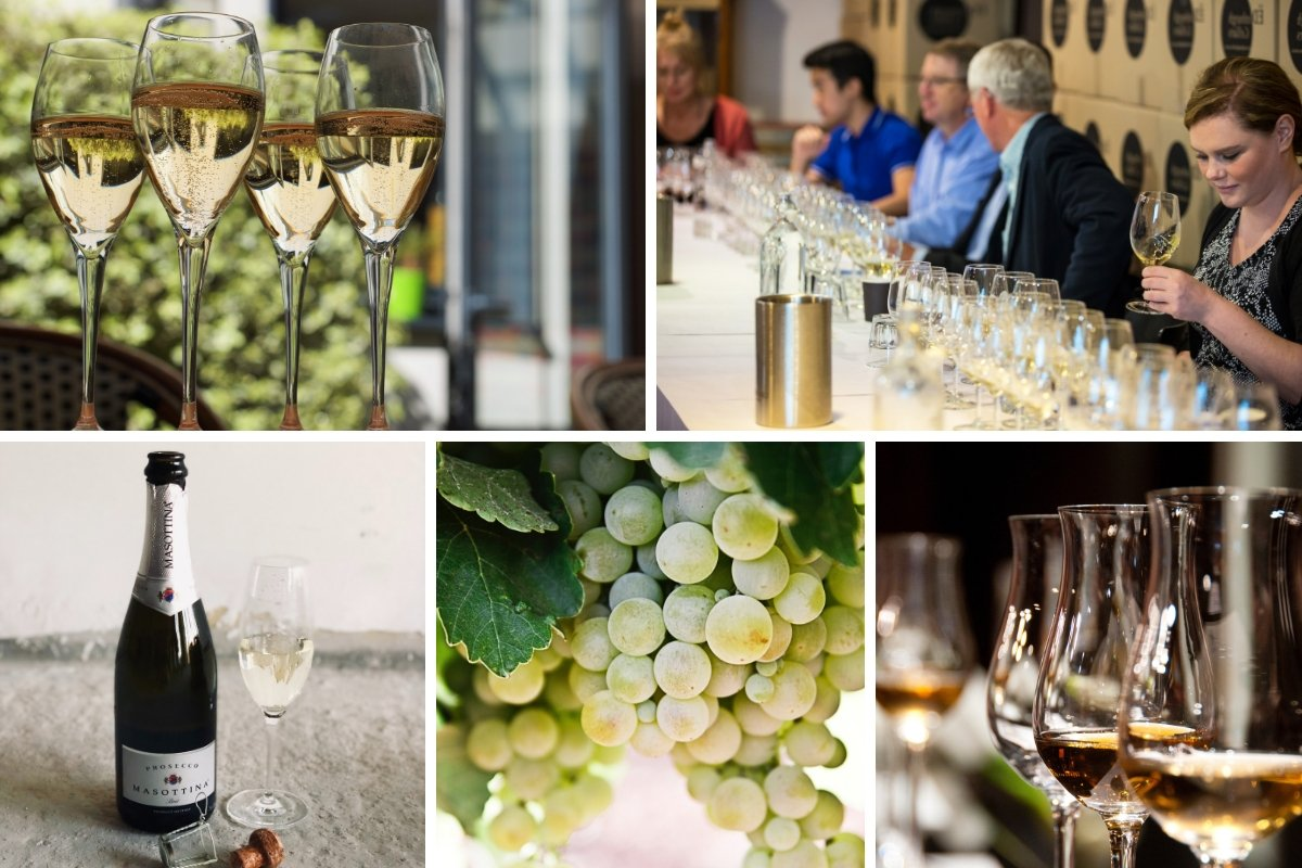 The Rise of Prosecco Gourmet Short Course