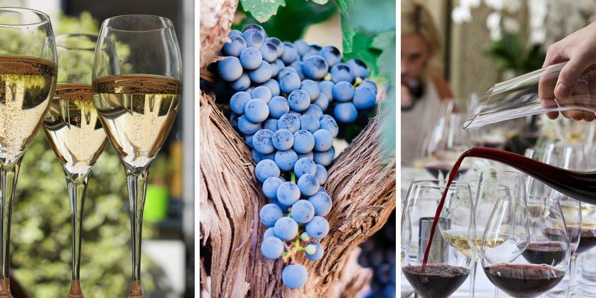 Complete wine series le cordon bleu