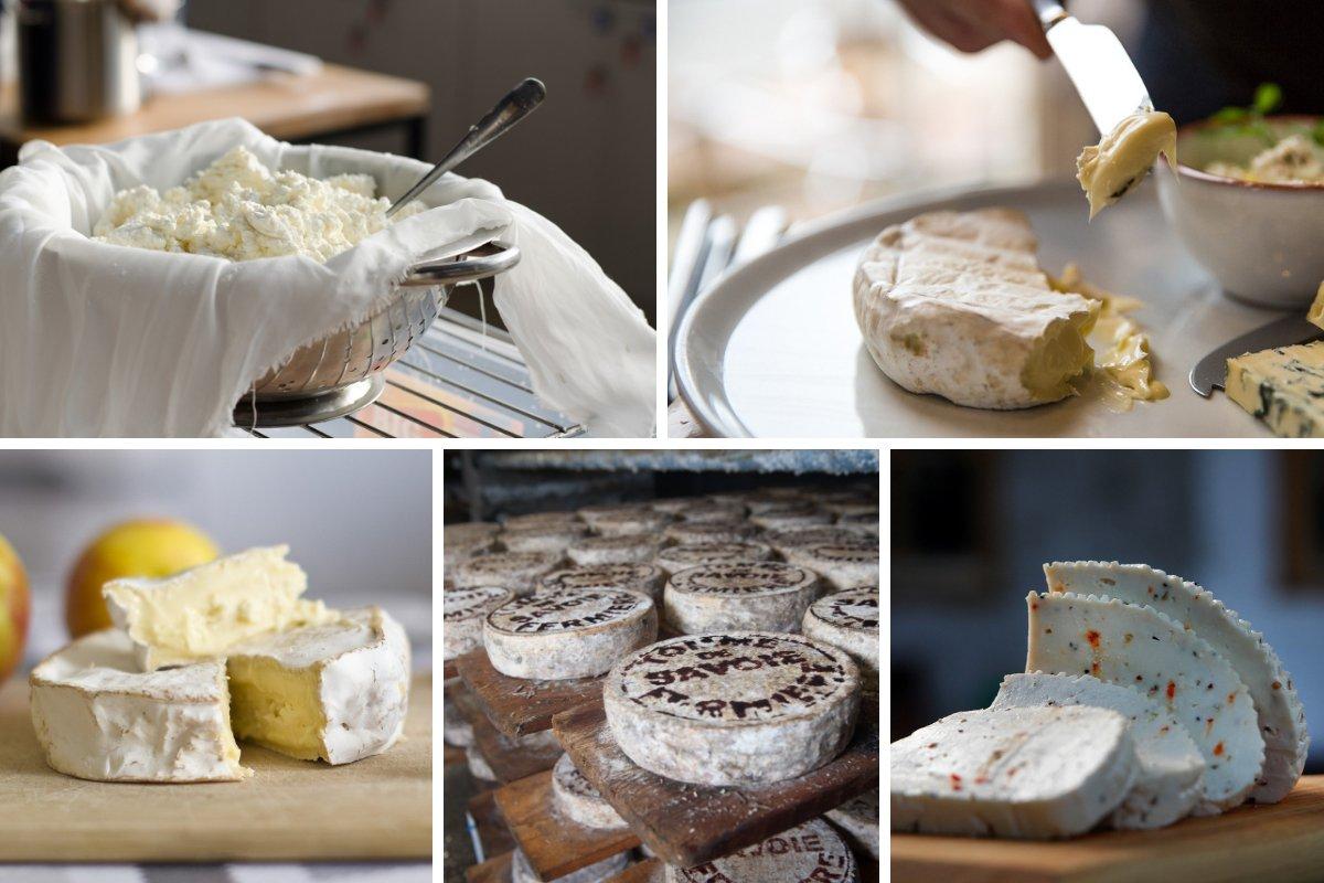 French Cheese Making Le Cordon Bleu Australia