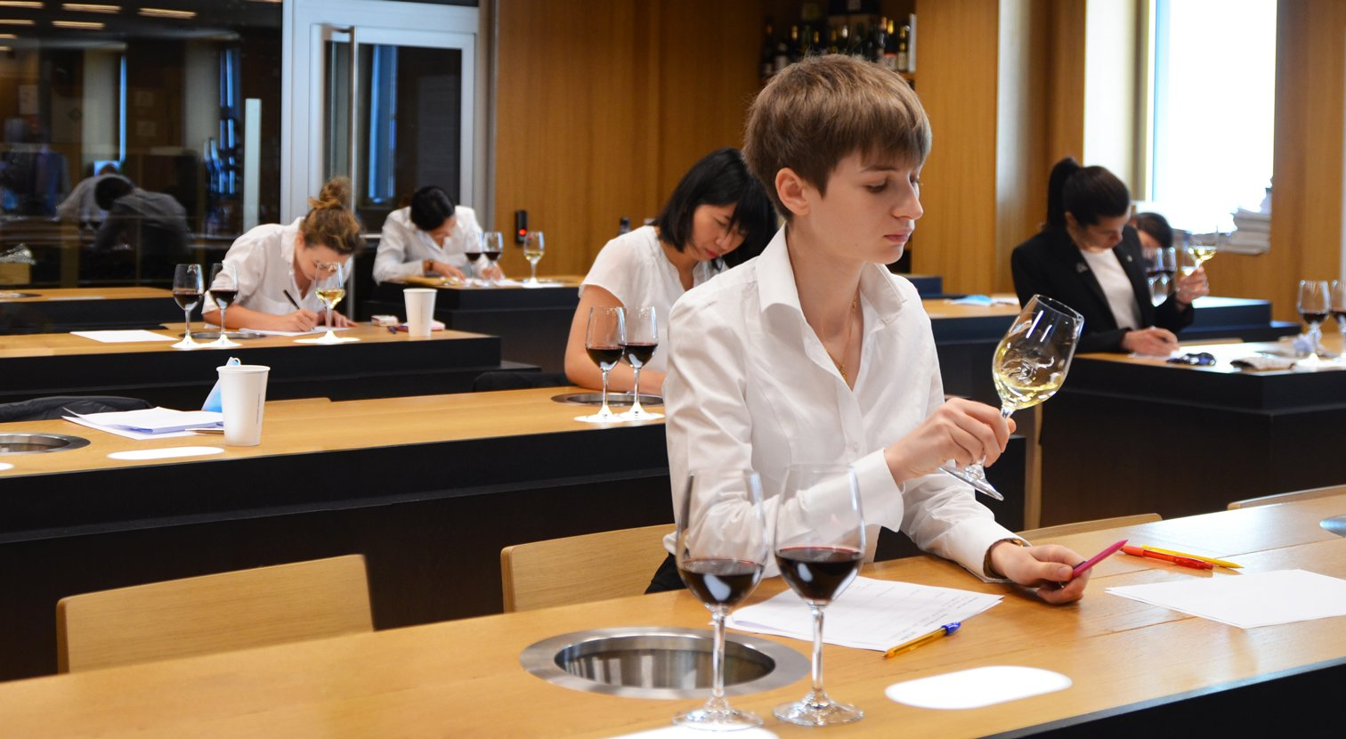 The 5 strong points of the Wine and Management Diploma