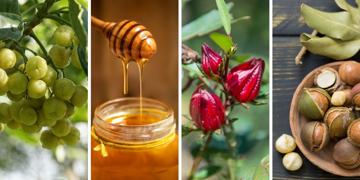 Lemon Aspen, Leatherwood Honey, Rosella, Macadamia Nuts