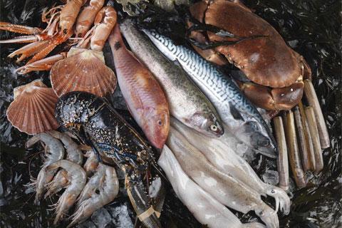 Fish and Shellfish short course at Le Cordon Bleu London